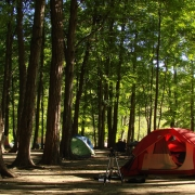 Camping at Powell River, British Columbia Thumbnail
