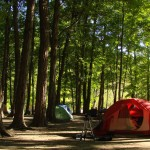 Camping at Powell River, British Columbia
