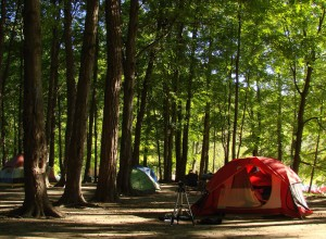 Camping at Powell River, British Columbia Canada