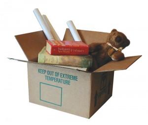 Camp-in-a-Box: Organized Camping