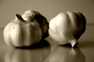 Garlic is an Insect Repellant