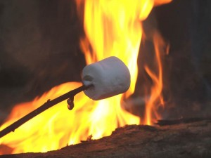 Roasting a Marshmallow over Campfire