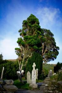 Walking the Wicklow Way Trail in Ireland