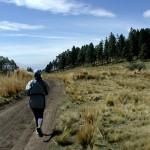 Trail Jogging