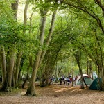 "WOWO Campsite Puts the ""Wow"" Back in Camping"