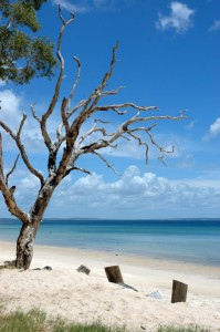Top 10 Australian Camping Spots