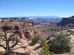 Hiking Las Vegas: Leave the Buffets and Blackjack and Head for the Hills!