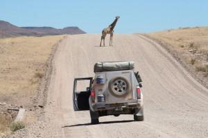 How to Prepare for a Camping Safari