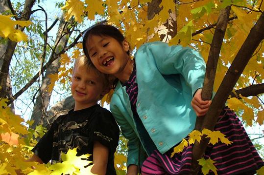 Second Winner - Fun Activities for kids camping